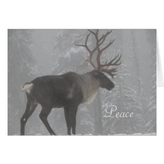 Wildlife Christmas Card with Moose