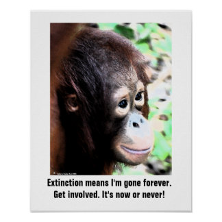 Wildlife Extinction poster