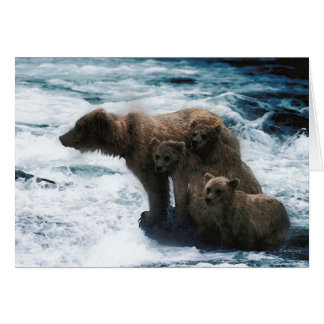 Wildlife-Family of grizzlies Card