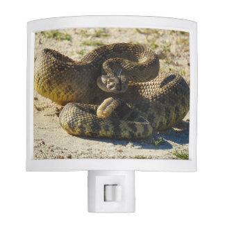 Wildlife, night light, snakes, rattlesnake night lites