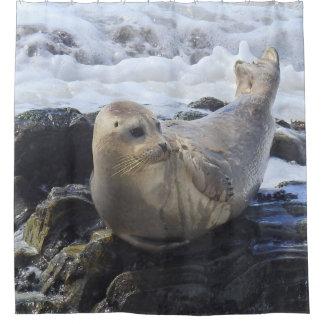 Wildlife shower curtain, harbor seal, marine life