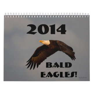 Wildlife wall calendar bald eagles 2014