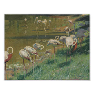 Wilhelm Kuhnert, A flock of flamingos Poster