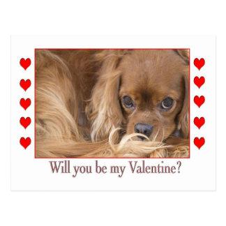 Will you be my Valentine's Day Spaniel Postcard