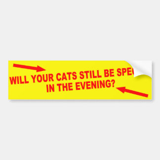 Will Your Cats Still Be Special in the Evening? Bumper Sticker