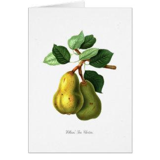 Williams Bon Chretien pear Card