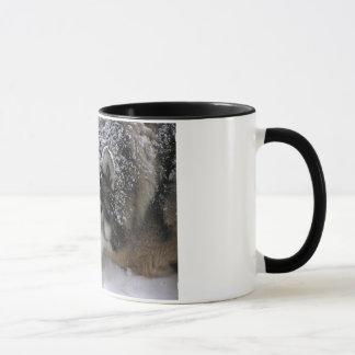 Willie Girl Mug