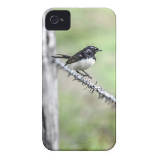 WILLIE WAGTAIL QUEENSLAND AUSTRALIA iPhone 4 COVER