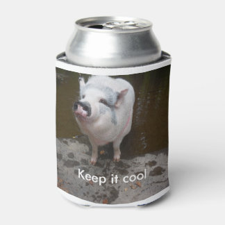 Willow Coozy Can Cooler