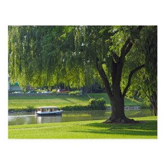 Willow River 190 Postcard
