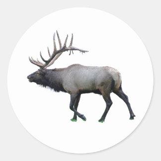 Willow Wapiti elk Classic Round Sticker