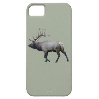 Willow Wapiti elk iPhone 5 Covers