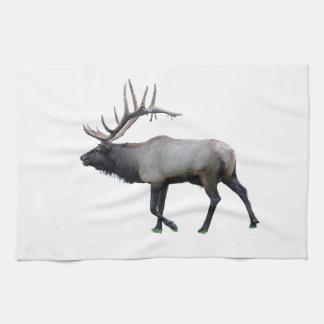 Willow Wapiti elk Towel