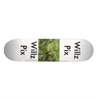 Willz Pix Skateboard