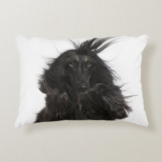 Windblown Afghan Hound Accent Pillow