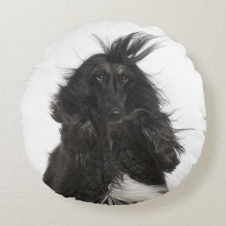Windblown Afghan Hound Round Pillow