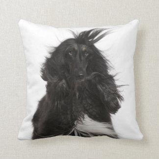 Windblown Afghan Hound Throw Pillow