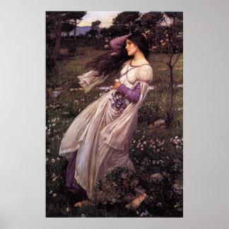 Windflowers-by John William Waterhouse, 1902 Poster