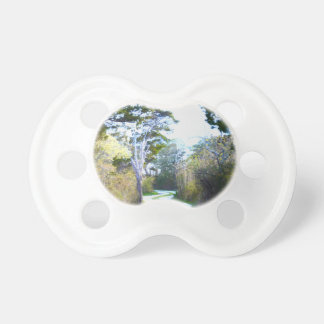 Winding Path Baby Pacifiers