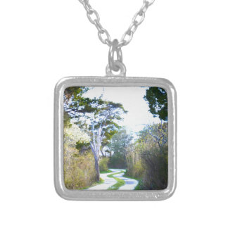 Winding Path Silver Plated Necklace