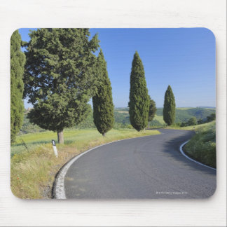Winding Road Lined with Cypress Trees, Val Mouse Pad