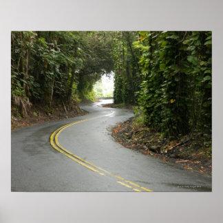 Winding roads through rainforest, Island of Poster