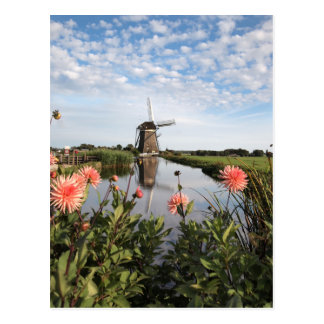 Windmill and flowers in the Netherlands postcard
