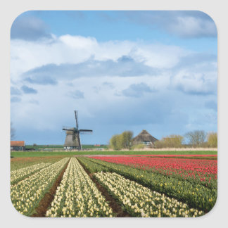 Windmill and tulips landscape sticker