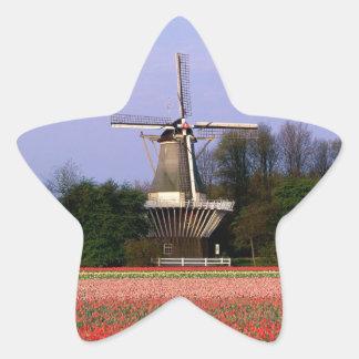 Windmill in the bulb fields star sticker