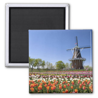 Windmill Island park with tulips in bloom at Square Magnet