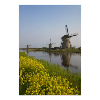Windmills along the canal in Kinderdijk, Poster