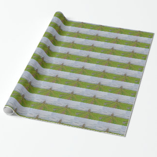 windmills of Kinderdijk world heritage site Wrapping Paper
