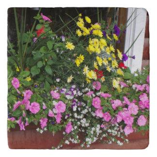 Window Box Flowers Trivet