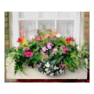 Window Box of Colorful, Cascading Mixed Flowers Poster