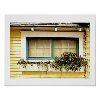 window Box With Flowers Art Print