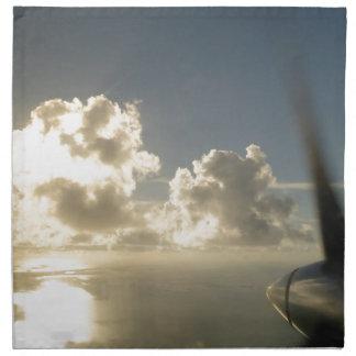 Window Seat Napkin