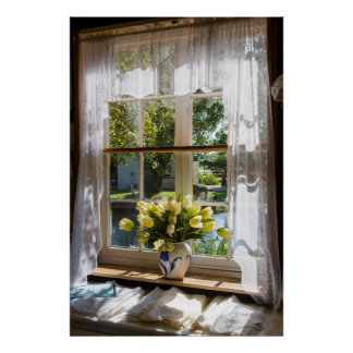 Window with lace curtain and tulips poster