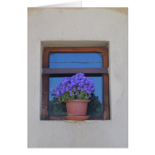 Windowledge with Potted Flowers Card