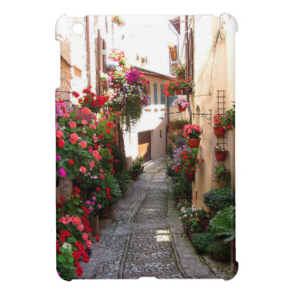 Windows, balcony and flower alleys cover for the iPad mini