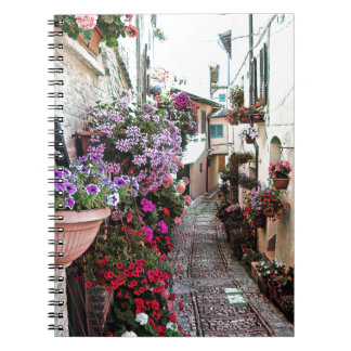 Windows, balcony and flower alleys in Spello Notebooks