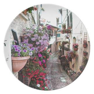 Windows, balcony and flower alleys in Spello Plate