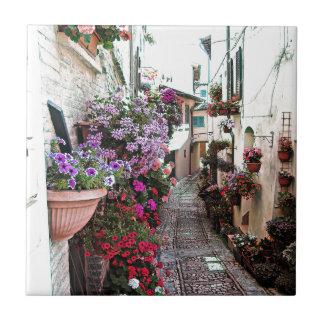 Windows, balcony and flower alleys in Spello Tile