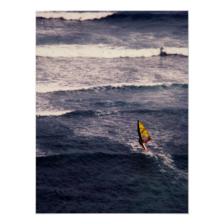 windsurfer print