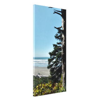 Windswept Tree Ocean View Wrapped Canvas Print