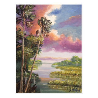 Windy Palm Trees Backwoods Postcard