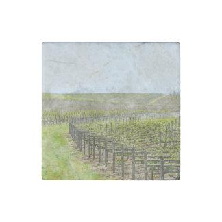 Wine and Grape  Decor Stone Magnets