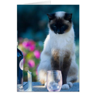 Wine cat card