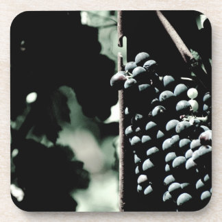 Wine Grapes Coaster
