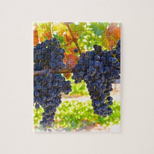 Wine grapes jigsaw puzzle