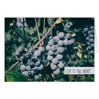 Wine Purple Grapes Harvest Grape on the Vine Card